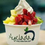 Locally Crafted Frozen Yogurt ~