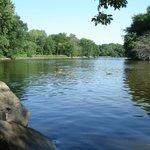 Big Woods Lake Recreation Area