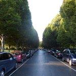 Tree lined Herbert Park, a reminder of The Pembroke Estate