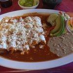 Amazing chicken enchiladas!
