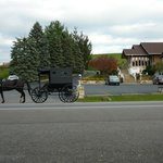 Chalet in the Valley with Amish cart