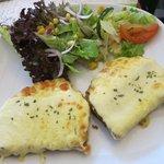 Open fresh Cheese Toasted Sandwich