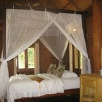 New Room at Mahout Resort