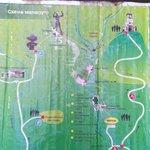 карта map