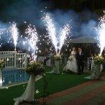 wedding in our garden