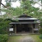 Ichishimatei