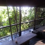 dinning area in the jungle