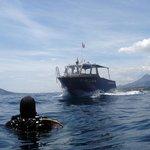 diving snapshot