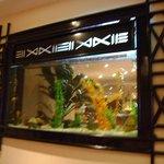 Aquarium in the restaurant entrance