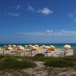 Umbrellas and Beach Toys