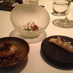 """starter -"""" Rockpool"""" ( 3 of the 5 components)"""