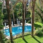 Have område med pool