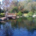 Yürüyüş için suni göl üzerinde