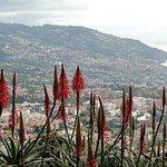 ...der Blick auf Funchal...