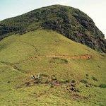 The Mukurti peak.