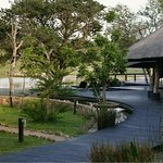 Chitwa Chitwa Private Game Reserve Foto