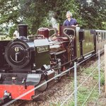 Bure Valley Steam Train which passes gently through the grounds