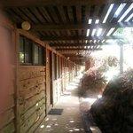 corridor of acacia room