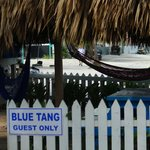 Private sitting area for Blue Tang guests only