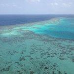 Sanganeb reef
