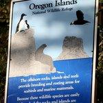 Oregon Islands NWR