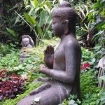 stunning Balinese inspired gardens