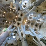 The ceiling of the Sagrada Familia