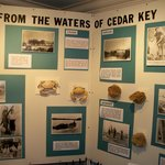 Cedar Key Waters