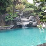 poolside Adi Dharma