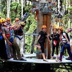 Hollybank Treetops Adventure