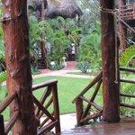 garden-vie from terrasse