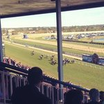 Spring Race Carnival at Caufield