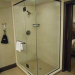 Shower in Suite Bathroom (remarkably, no bath)