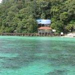Dark green colour is due to underwater corals