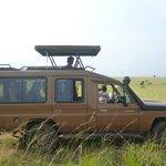 Safari Heavy duty Land Cruiser