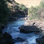 Mighty Umzimkulu River