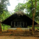 Tented Cottage # 1 - Black Drongo