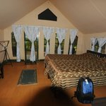 The Tented Room