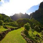 Makana Mountain Ridge in Limahuli Gardens