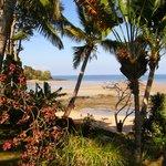 Le jardin et la plage.
