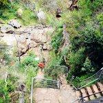 Mackenzie Fall's base  1.16km return w lots stairs case