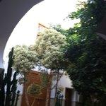 Cour intérieure du Riad depuis espace détente
