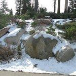 Snow in November at Wuksachi Lodge Parking Area