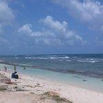 una playa de sandres