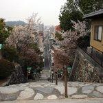 境内、階段の上からの眺め。桜が咲いていてとてもきれいでした。