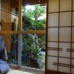 garden view from our ryokan bedroom