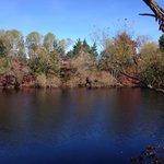 The pond off Brickyard Rd