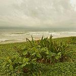 Photo of Sunils Beach Hotel