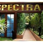 Spectra Maadi