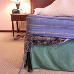 MacDonald's Luxury Bed